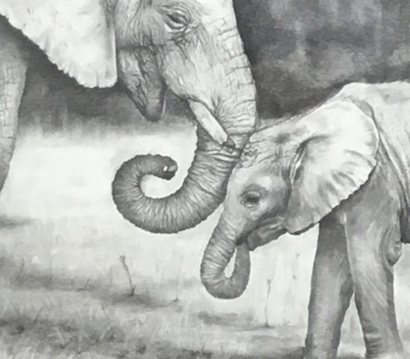 Elephant Affection - Kayla Peacock - Tendoy Fine Art
