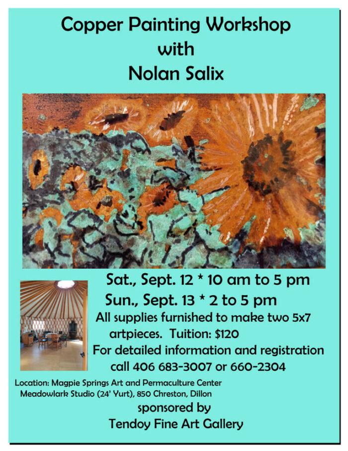 Nolan Salix Workshop